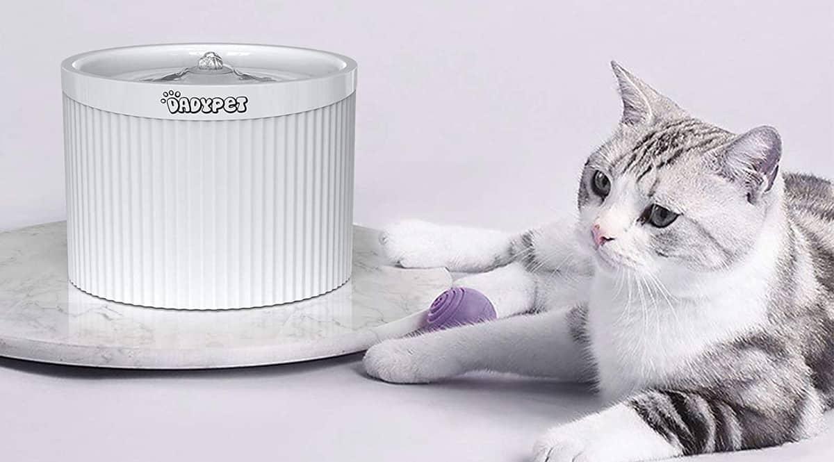 Fuente para gatos Dadypet barata, fuentes para gatos baratas, chollo