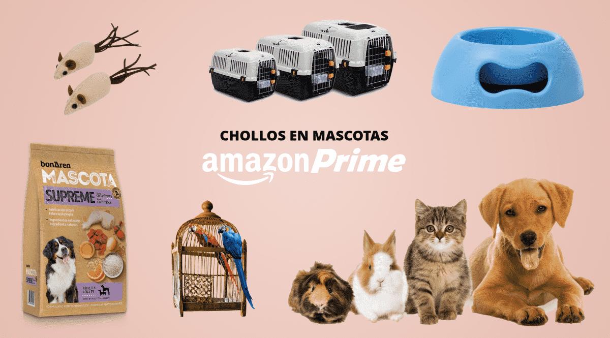 Amazon Prime Day 2021. Los mejores chollos para tu mascota: pienso, comida húmeda, areneros, cepillos…